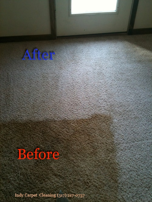 Top #1 Carpet Cleaning Indianapolis - Services In ...