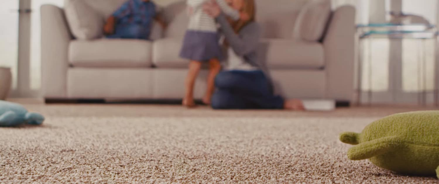 1 Topnotch Carpet Cleaning Services In Indianapolis In