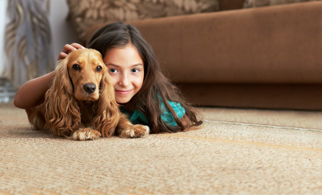 indy-carpet-cleaning-capet-cleaning-indianapolis-main-page