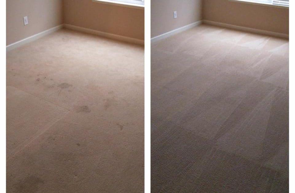 Whole Carpet Indianapolis Indiana Carpet Vidalondon