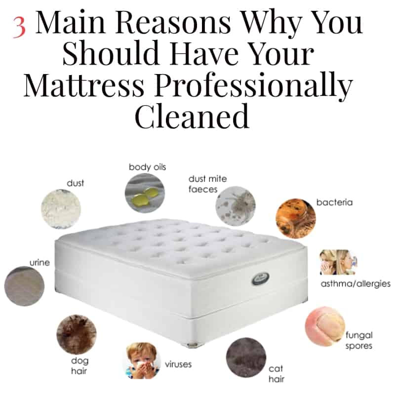 how to professionally clean a mattress